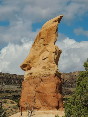 Photo Note Card: Giant Elf