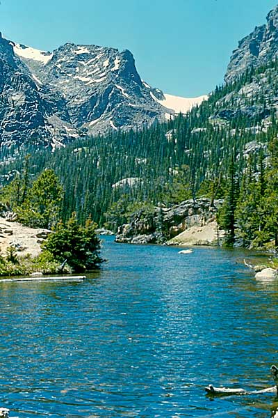 Photo Note Card: 